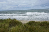overview of texel beach by hard wind