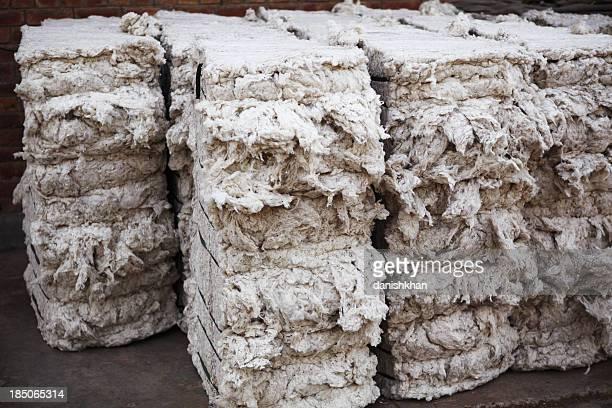 Textile Mill - Organic Cotton Bales