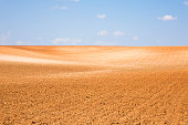 Dirt, Field, Land, Sky, Farm