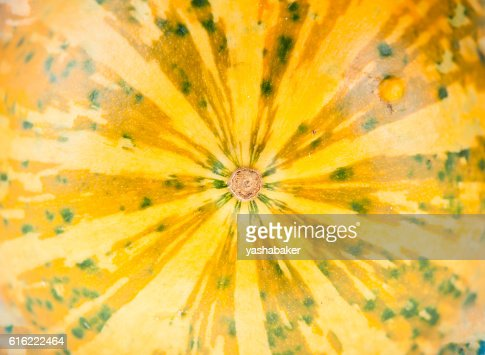 Texture of Fresh yellow organic decorative pumpkin : Stock Photo