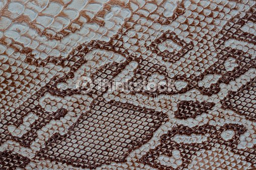 Texture of genuine leather close-up, embossed under the skin a reptile, with fashion pattern and matte surface. Natural shades, trendy background