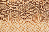 Texture of genuine leather close-up, embossed under the skin of a reptile, background
