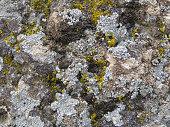 Beautiful dirty stone surface
