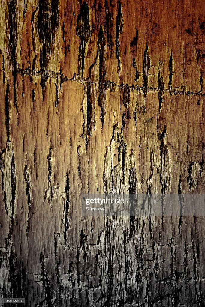 texture of the old damaged pine wood : Stock Photo