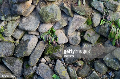 Texture, Stone walls built in the old way, plants growing in the gaps : Stock Photo