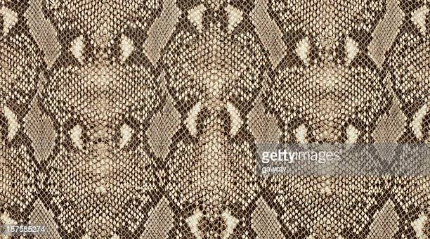 Textured background of genuine leather in python skin pattern
