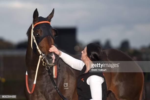 Thaad after winning Bay and Ranges Region Handicap at Flemington Racecourse on June 24 2017 in Flemington Australia