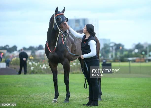 Thaad after winning Bay and Ranges Region Handicapat Flemington Racecourse on June 24 2017 in Flemington Australia