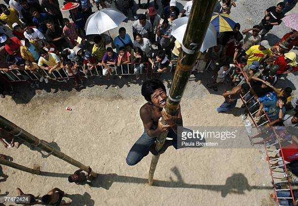Thai man attempts to climb up a bamboo pole grabbing Thai bhat as a reward in a climbing competition iat the annual water buffalo race October 24...