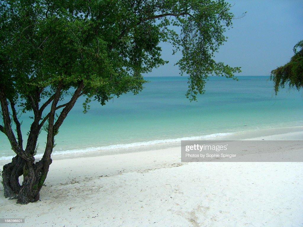 Thailand beach : Stock Photo