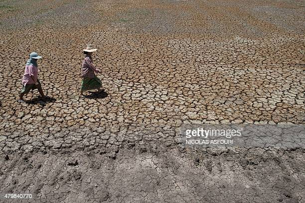 ThailandeconomyricedroughtFOCUS by Jerome Taylor This picture taken on July 2 2015 shows Thai farmers walking across a dried out field in Bang Pla Ma...