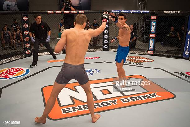 Thanh Le and Martin Svensson touch gloves during the filming of The Ultimate Fighter Team McGregor vs Team Faber at the UFC TUF Gym on August 7 2015...