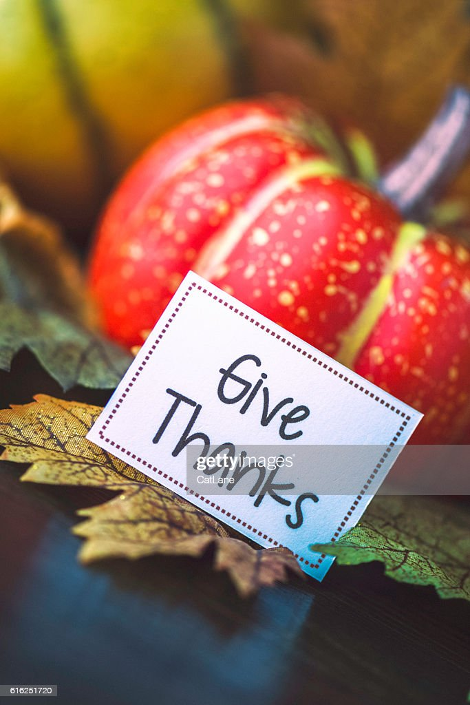 Thanksgiving fall arrangement with pumpkins, leaves and give thanks message : Stock Photo