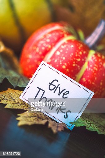 Thanksgiving fall arrangement with pumpkins, leaves and give thanks message : Foto de stock
