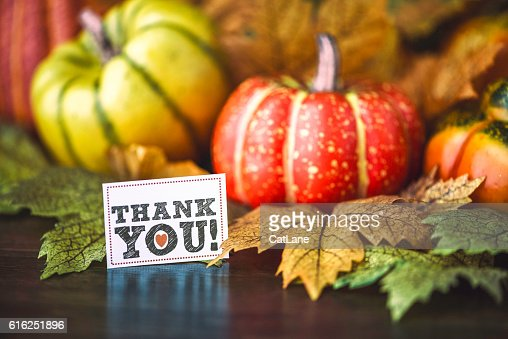 Thanksgiving fall arrangement with pumpkins, leaves and thank you message : Foto de stock