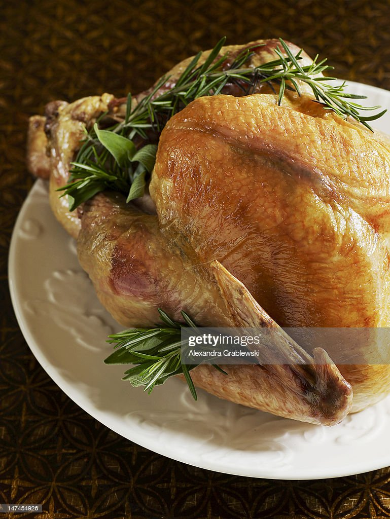 Thanksgiving Turkey : Stock Photo