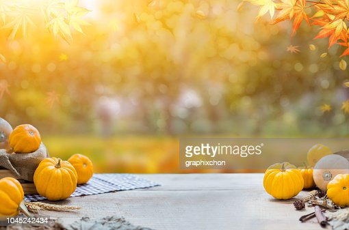 Thanksgiving with fruit and vegetable on wood in autumn and Fall harvest cornucopia season : Stock Photo