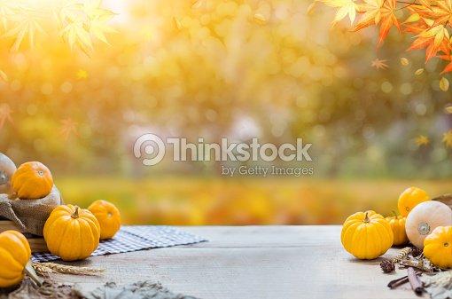 Erntedankfest mit Obst und Gemüse auf Holz im Herbst und im Herbst Erntezeit Füllhorn : Stock-Foto