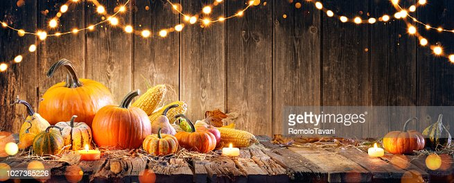 Thanksgiving With Pumpkins And Corncob On Wooden Table : Foto de stock