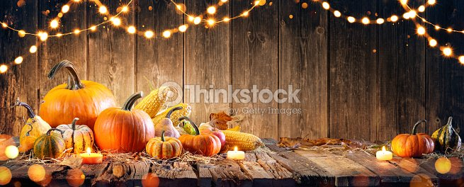 Thanksgiving With Pumpkins And Corncob On Wooden Table : Foto stock