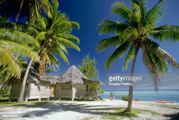 Thatched Cottage and Palm Trees on Beach