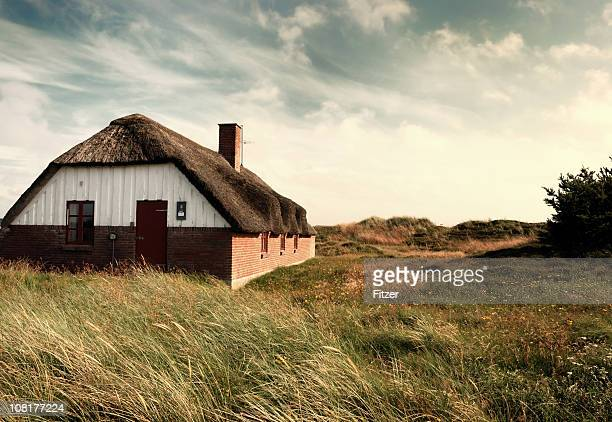 thatched roof and dunes