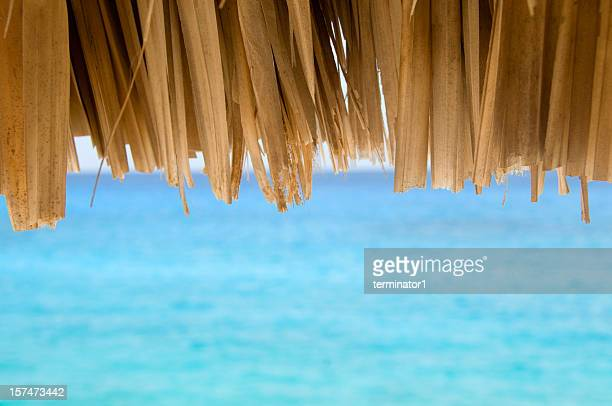 Thatched Roof Hut on Ocean