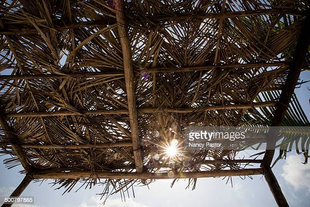 thatched roof on beach