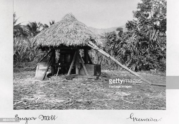 Thatched sugar mill Grenada 1897