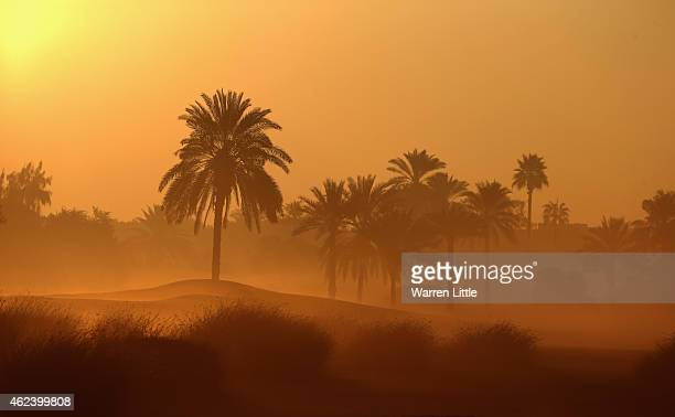 The 10th hole is poictured in the morning fog at sun rise ahead of the Omega Dubai Desert Classic on the Majlis Course at the Emirates Golf Club on...