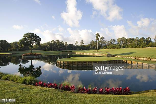 The 17th hole of THE PLAYERS Stadium Course at the TPC Sawgrass in Ponte Vedra Beach FL Photo by Chris Condon/PGA TOUR