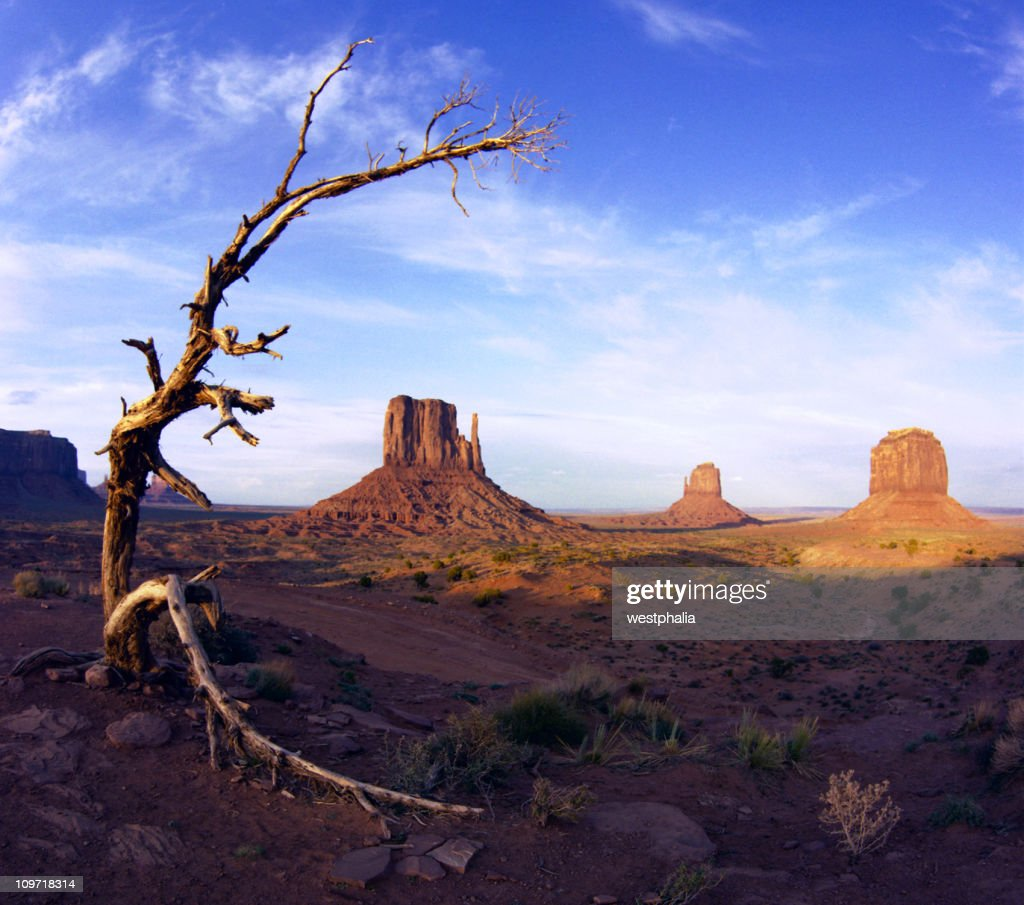 The 2 Mittens, Monument Valley : Stock Photo