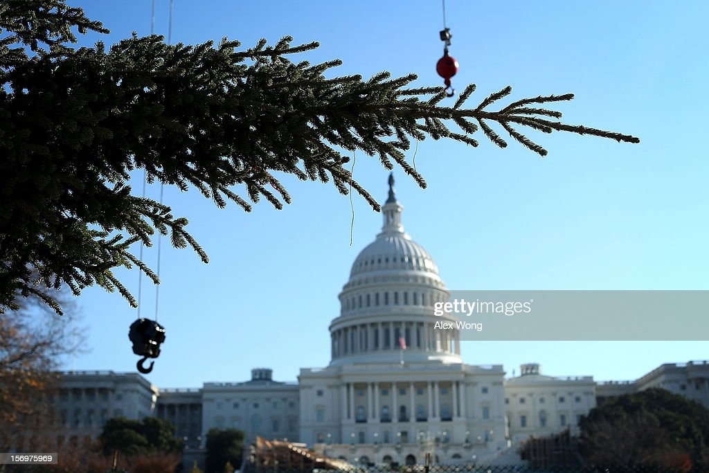 The 2012 U.S. Capitol Christmas Tree arrives at Capitol Hill November 26, 2012 in Washington, DC. The year's tree is a 65-foot Engelmann spruce from the Blanco Ranger District of the White River National Forest in Colorado. The tree will be lit by Speaker of the House Rep. John Boehner (R-OH) during a ceremony on December 4.