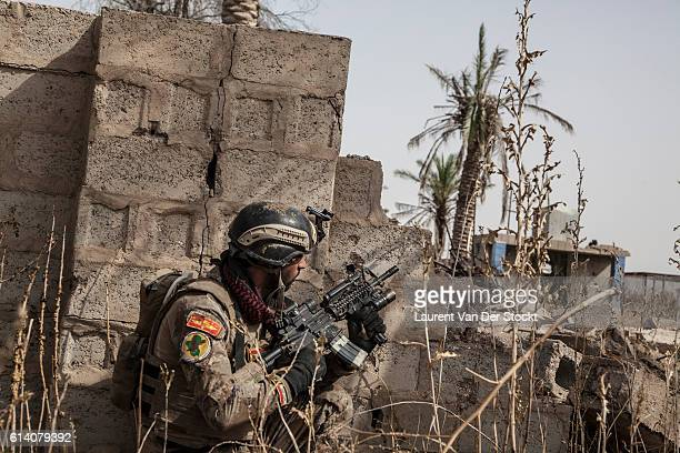 FALLUJAH IRAQ The 5th of JUNE 2016'nAt the head of the advance on the road entering in Fallujah special forces as a large autonomy and react...