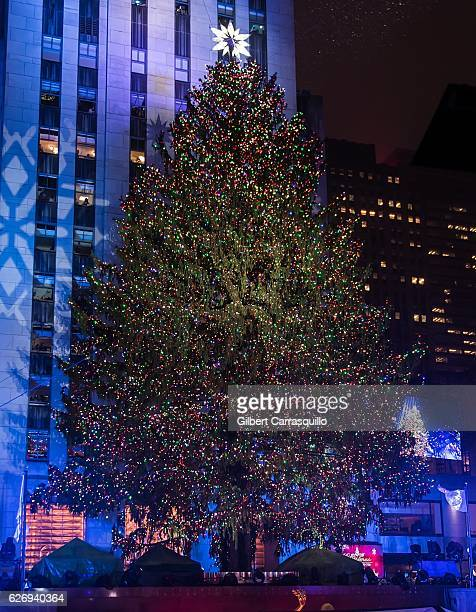 The 94foottall Rockefeller Center Christmas tree and the Swarovski Star are lit during the 84th Annual Rockefeller Christmas Tree Lighting Ceremony...