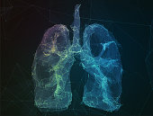 The abstract image of human lungs in the form of lines of communication network.