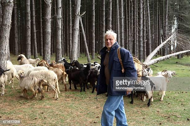 The actor and director Michele Placido posing for a photo shooting at the Aspromonte and Locride National Park while shooting the miniseries L'ultimo...