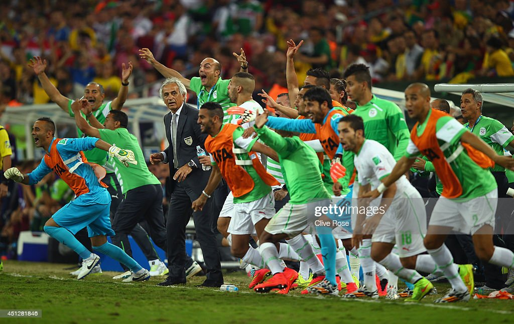 The Algeria bench celebrates after a 1-1 draw during the 2014 FIFA World Cup Brazil Group H match between Algeria and Russia at Arena da Baixada on June 26, 2014 in Curitiba, Brazil.