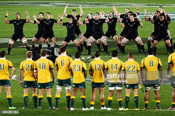 The All Blacks perform the haka during The Rugby Championship Bledisloe Cup match between the New Zealand All Blacks and the Australian Wallabies at...