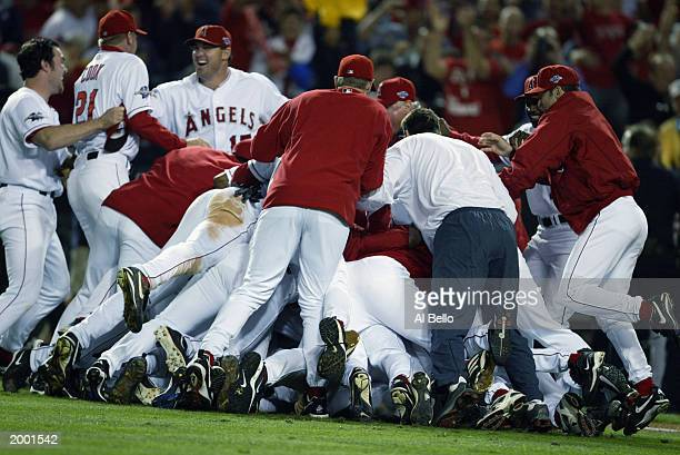 The Anaheim Angels celebrate with a dog pile after the victory against San Francisco Giants during game seven of the World Series on October 27 2002...