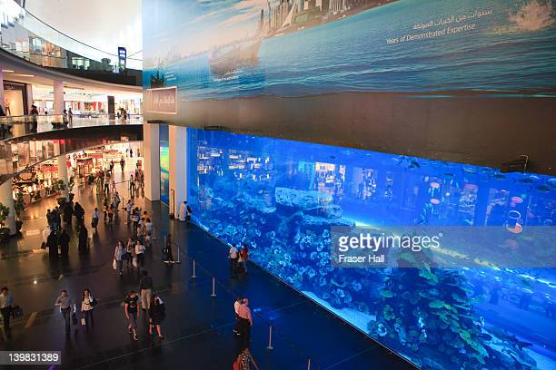The Aquarium inside the Dubai Mall, the World's largest shopping mall, Downtown Dubai, Dubai, United Arab Emirates