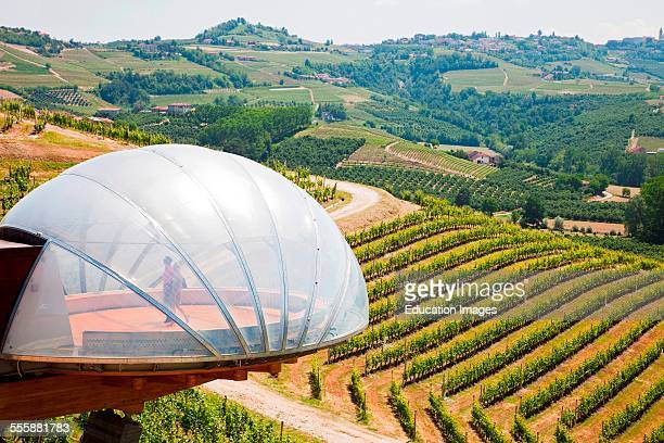 The Architecture Called Acinus And The Vineyards Wineries Cerreto Of St Cassiano Alba Langhe Piemonte Italy Europe