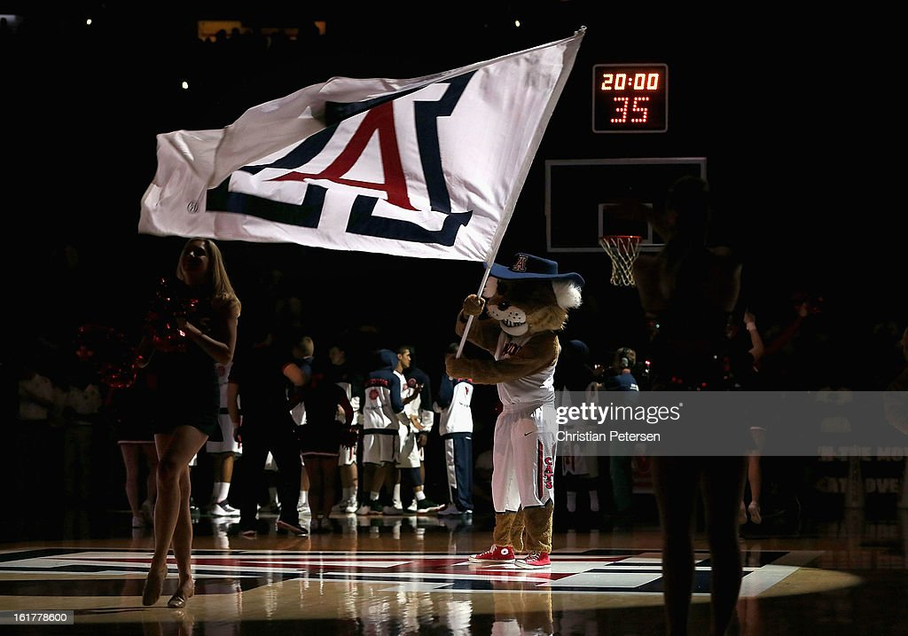 The Arizona Wildcats mascot 'Wilbur' waves a flag before the college basketball game against the California Golden Bears at McKale Center on February 10, 2013 in Tucson, Arizona. The Golden Bears defeated the Wildcats 77-69.