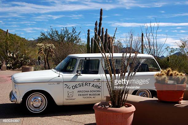 The ArizonaSonora Desert Museum's 'Desert Ark' vehicle a vintage Studebaker Lark VIII is parked in front of the museum which is located in Saguaro...