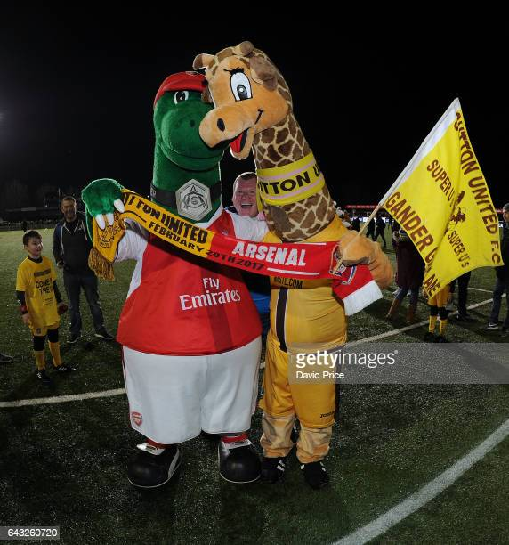 The Arsenal mascot Gunnersaurus and Jenny the Giraffe the Sutton mascot and Wayne Shaw of Sutton before the match between Sutton United and Arsenal...