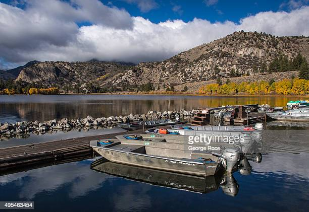 The aspen trees along the June Lake Loop at Gull Lake Marina are viewed in a burst of autumn color on October 28 near June Lake California Despite...