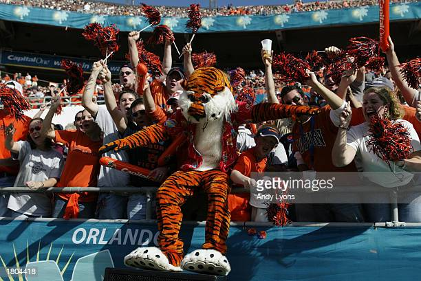 The Auburn University Tiger celebrates with fans during the Capital One Bowl against the Pennsylvania State University Lions at Florida Citrus Bowl...