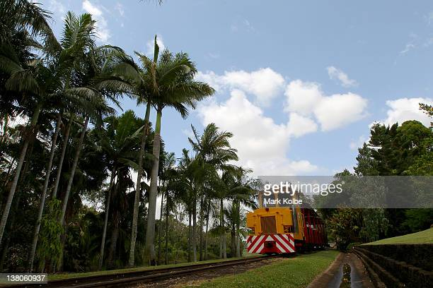 The Australian Sugarcane Railway tourist ride rolls through the Bundaberg Botanic Gardens on January 13 2012 in Bundaberg Australia The city of...