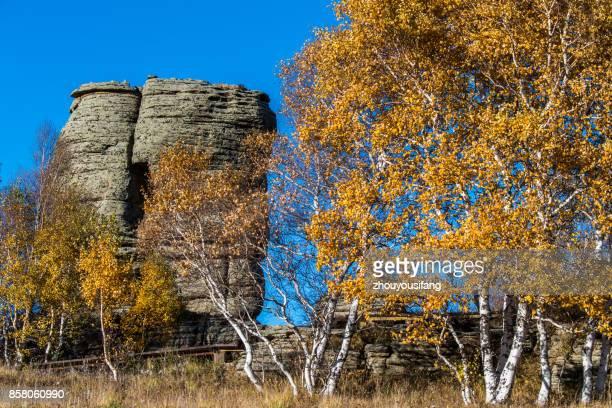 The autumn scenery of Asihatu Stone Forest