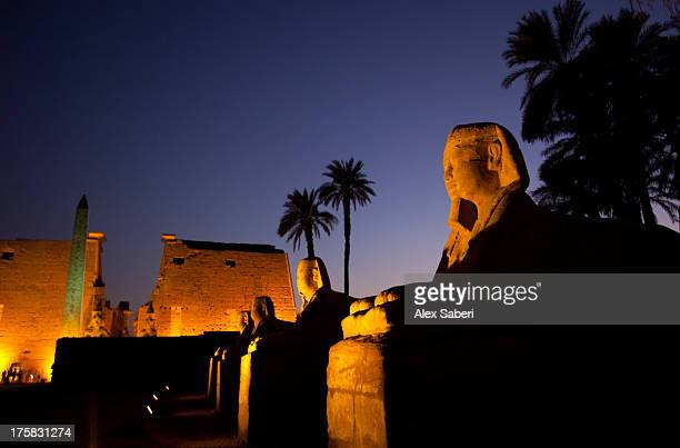 The Avenue of Sphinxes and Luxor temple illuminated at night.